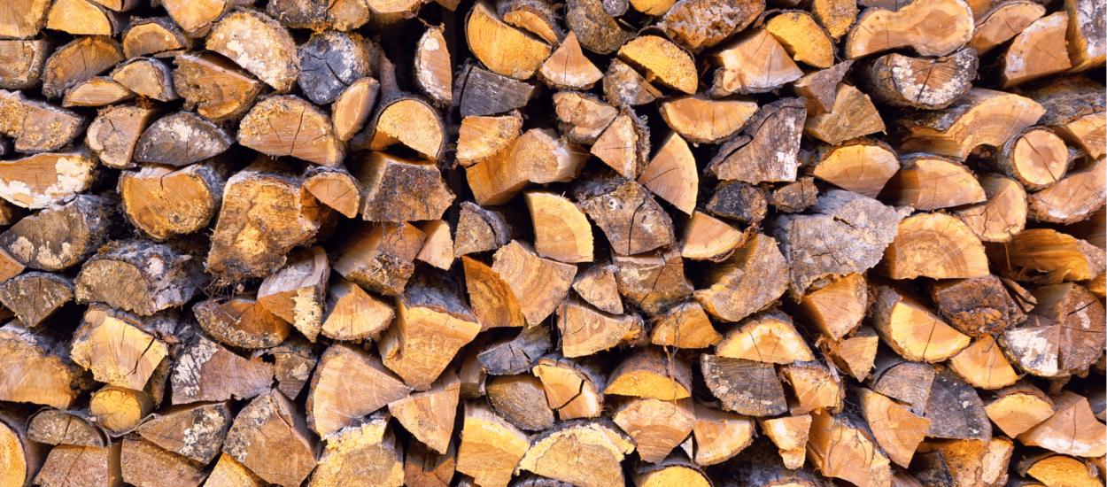 chaudière au bois